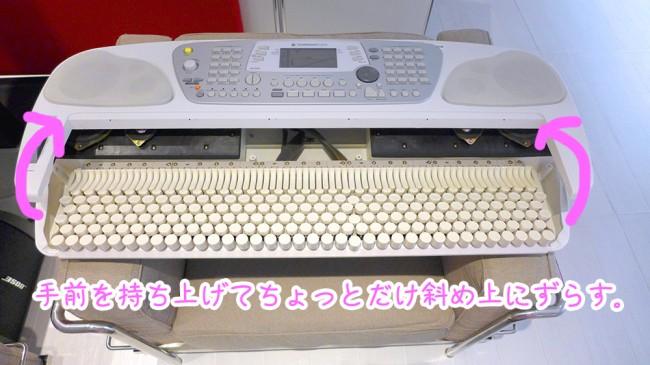 P1010696